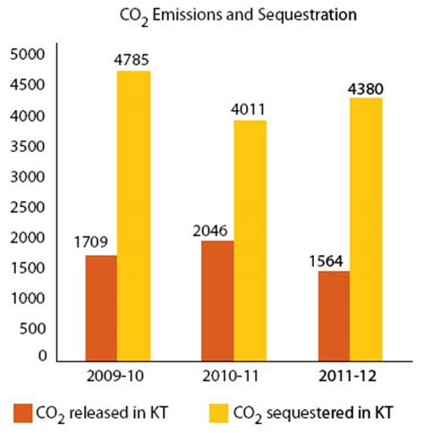 Investigating the carbon sequestration and storage