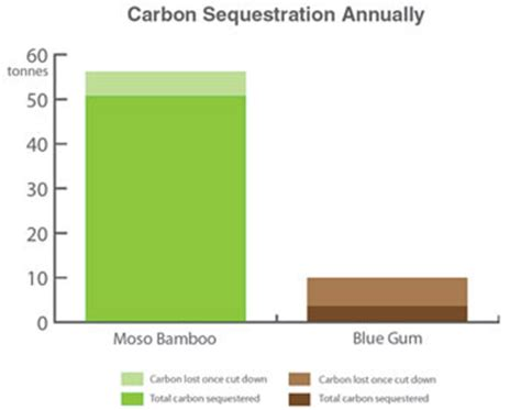 The value of carbon sequestration and storage in coastal